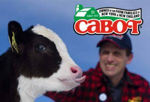 Cabot Cheese Weekend